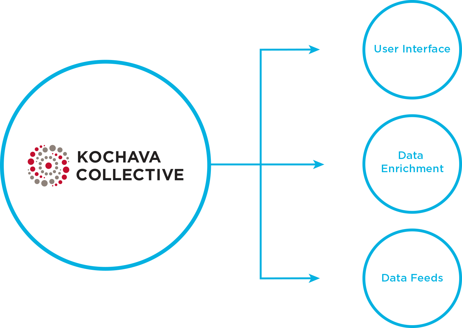 Kochava Collective composed of user interface, data enrichment, and data feeds
